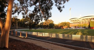 That's a boundary! A Bluedog Headingly® steel picket fence a hit for Adelaide Oval number 2