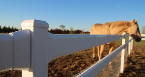 New product: TopRail® a top idea. No horsing around!